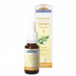 09 -Clematis - Clématite -...
