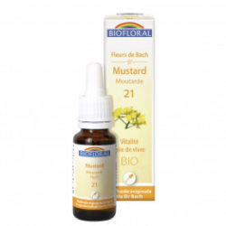 21 - Mustar - Moutarde - 20 ml